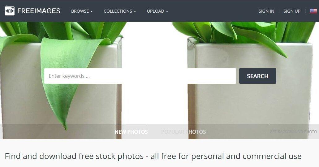 תמונות לשימוש חופשי